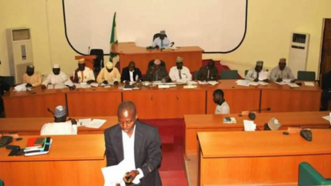 Niger Speaker supports call for 6 months paid maternity leave