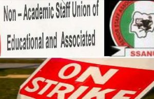 SSANU and NASU announce plans to begin 14 days nationwide warning strike